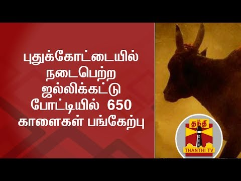 Jallikattu Held in Pudukkottai, 650 Bulls Participated | Thanthi TV
