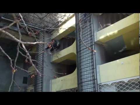 Lux Studio™ & Kerényi Film — A 3. emeleti lakás