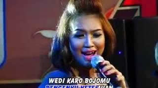 Top Hits -  Suliana Wedi Karo Bojomu Official Music Video