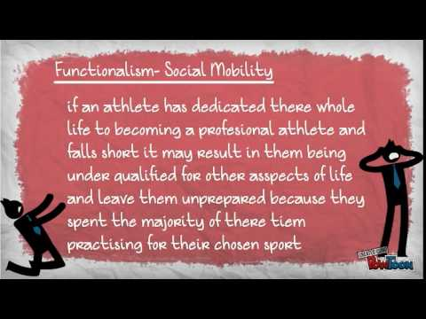 Sport and rec in society