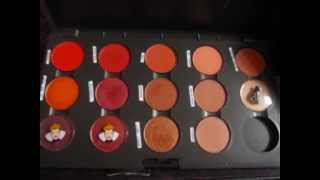 MAC eyeshadow & blush collection 2010 Thumbnail
