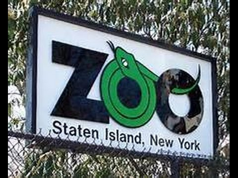 STATEN ISLAND ZOO NATURE WALK on iPhone 6 PLUS 1080p 60FPS