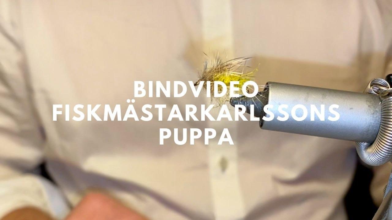 Download BINDVIDEO - FISKMÄSTARKARLSSONS PUPPA