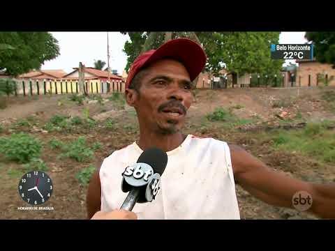 Pequenos riachos que abastecem os rios da Amazônia estão ameaçados | SBT Brasil (18/11/17)