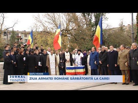 Ziua Armatei Române sărbătorită la Carei