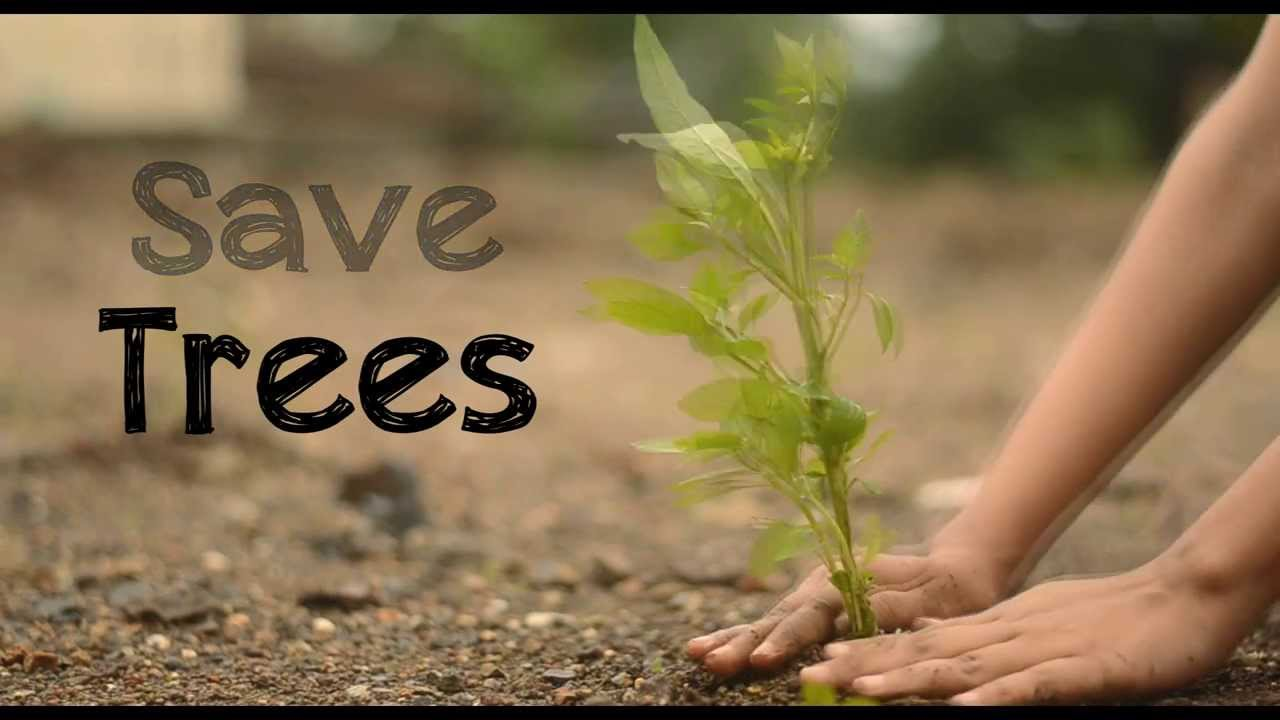 ways 2 save trees in hindi Find paragraph, long and short essay on save trees for your kids, children and students if we want to live life in healthy way, we have to save plants forever.