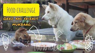 kita team eksekutif gero and friends mennantang gero , max dan moca untuk mencoba makanan yang beda / anti mainstream dan asing bagi hewan terutama ...