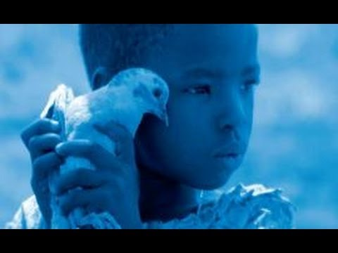 Filmfestival Gent: Interview met regisseur Gust Van den Berghe (Blue Bird)