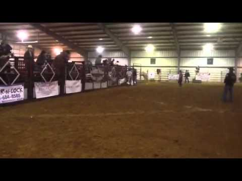 Shelbyville Tenn 2.11.12 Clay Clark bull didn't come out