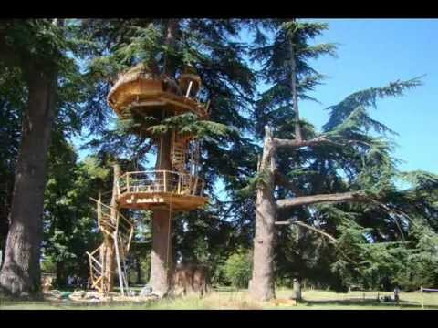 construire une cabane dans les arbres vid o sur un arbre perch youtube. Black Bedroom Furniture Sets. Home Design Ideas