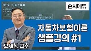 2021 손해사정사 자동차보험이론 샘플강의 1편 [손사…