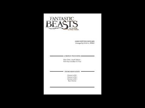 Fantastic Beasts And Where To Find Them - Clarinet Quartet
