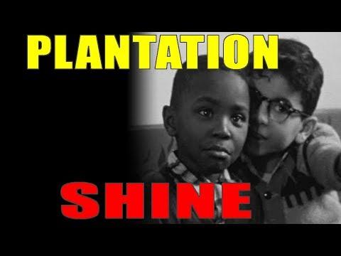 10-20-2018: Plantation Shine