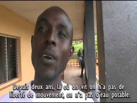 L'Huile de Palme en Afrique. Voix des communautés