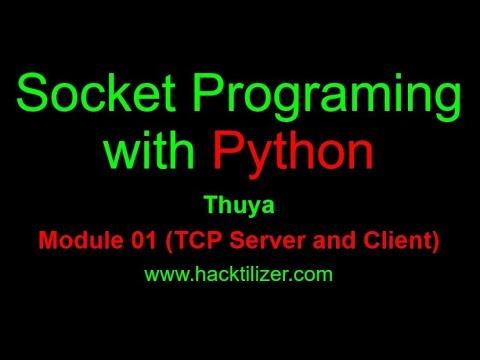 Cara Hacking Python