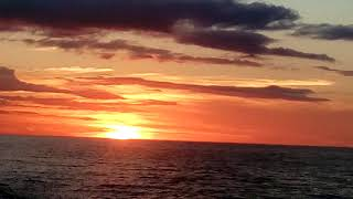 Download detik detik sunset di laut aru dri KM GENOVA