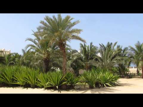 Cape Verde - Riu Karamboa HD - view of the grounds