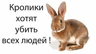 Кролики хотят убить всех людей !