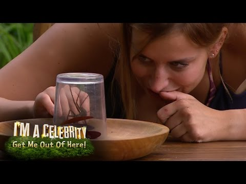 Ferne McCann Eats a HUGE Live Spider! | I'm A Celebrity... Get Me Out Of Here!