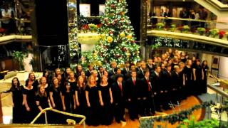 Download Palatine High School  Bahama Cruise 2010 MP3 song and Music Video