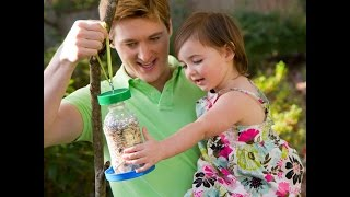 Bird Feeder Webi.avi