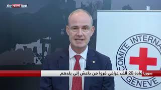 نائب رئيس الصليب الأحمر جيل كاربونيه: نسعى لإعادة 20 ألف عراقي فروا من داعش لبلدانهم