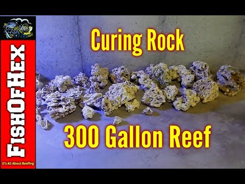 Curing 200 Pounds Of Pukani Dry Rock | 300 Gallon Reef Tank