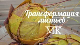 Флористика МК Трансформация листьев.