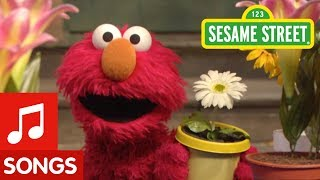 Sesame Street: The Flower Song