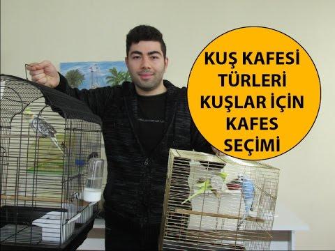 Kuş Kafesi Türleri | Kafes Alırken Nelere Dikkat Edilmeli