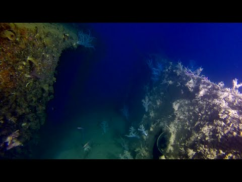 Final Edit - Extreme wreck dive - 167mt - SS Kreta Wreck (1943) - Night Fighter Direction ship