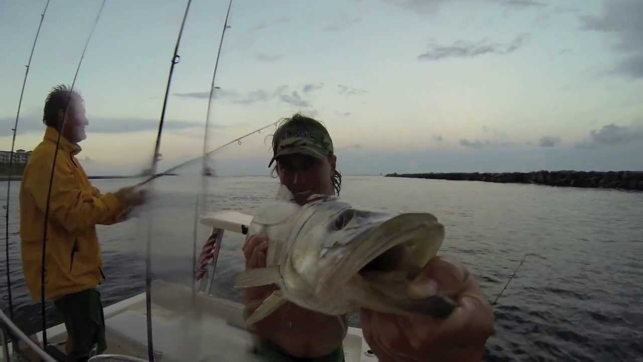 Snook Fishing The Palm Beach Inlet
