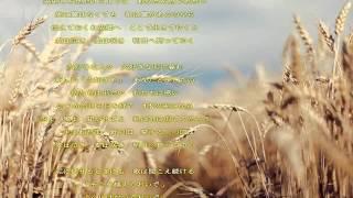 麦の唄 中島みゆき 歌詞付き relaxing music