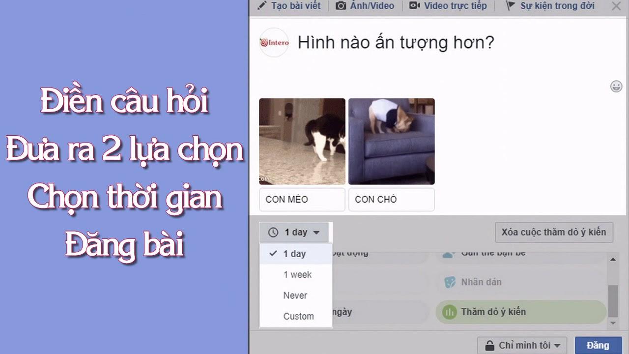 Cách Tạo Bài Đăng Khảo Sát Trên Facebook