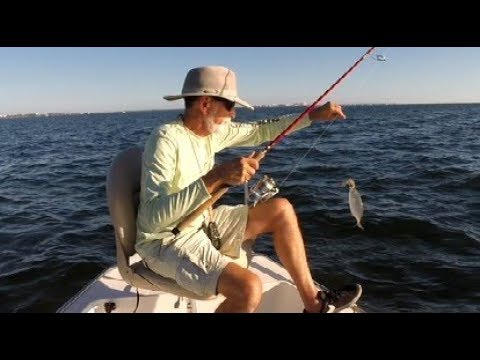 Sunday Fishing in Biscayne Bay 20171119
