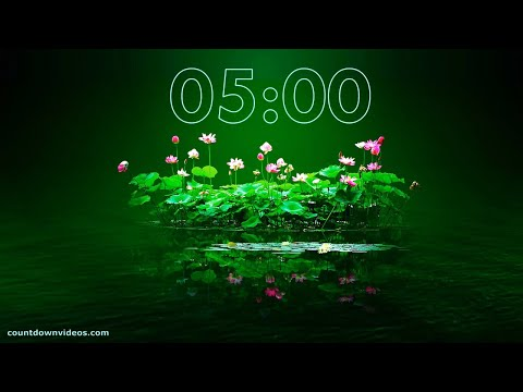 5 Minute Timer With Calm Relaxing Music ☯