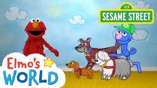 Sesame Street: Dog Walker | Elmo's World