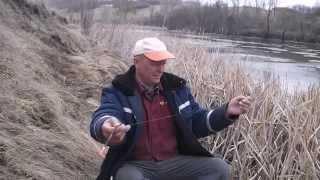 Ловля красноперки ранней весной на пруду. Украина.