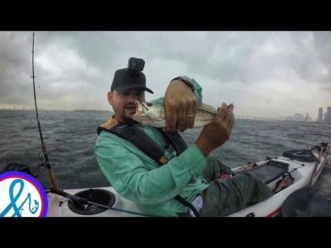 Daiwa BG BLACK GOLD  DOWTOWN MIAMI KAYAK FISHING (giveaway Closed)