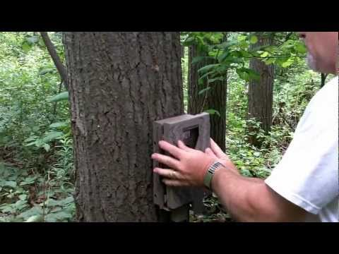 Trail Camera Quick Mounting Trick