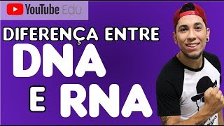 Diferenças entre DNA e RNA  (PRA TU NÃO CONFUNDIR)