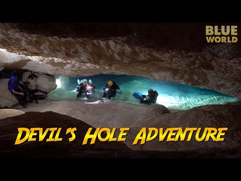 Devil's Hole Adventure! | JONATHAN BIRD'S BLUE WORLD