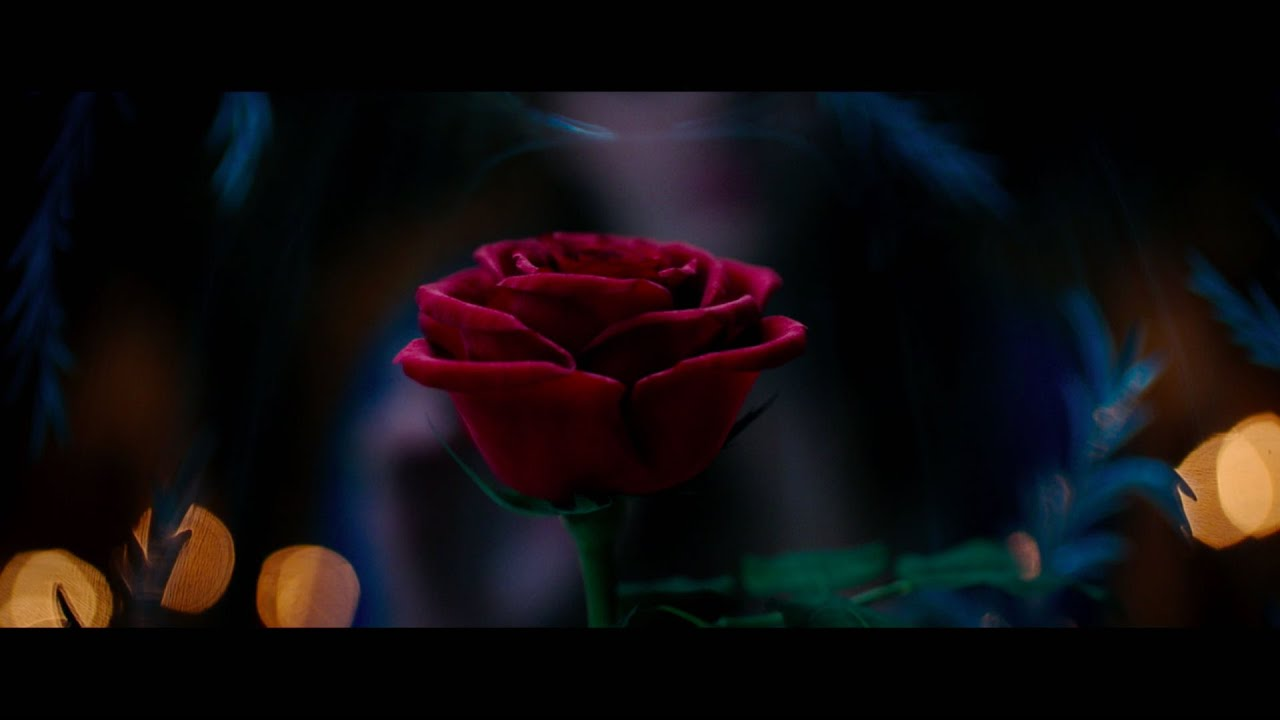 Beauty And The Beast 2017 Wallpaper: Disney's 'Beauty And The Beast' (2017) Official Teaser