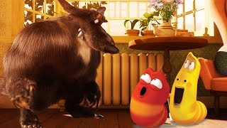 LARVA - WEREWOLF | Cartoon Movie | Cartoons For Children | Larva Cartoon | LARVA Official