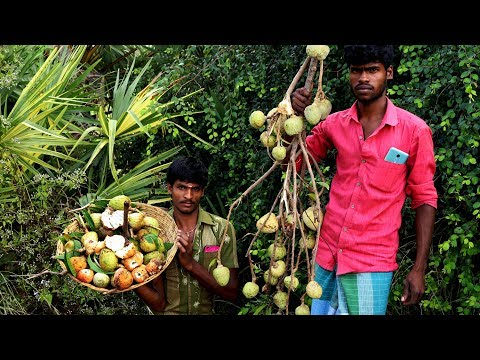 Farm Fresh ANNONA RETICULATA Fruits Plucking and Eating in my village | village food taste