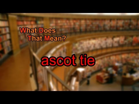 What does ascot tie mean?