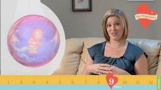 My Pregnancy - Week 9