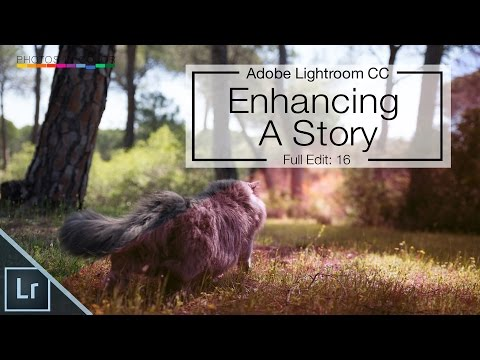 Lightroom 6 / CC full edit - Enhancing a story