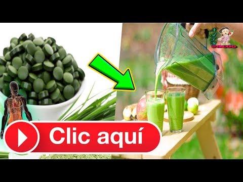 espirulina,-alimento-del-futuro.-conoce-todas-las-ventajas-de-esta-alga-colmada-de-nutrientes.