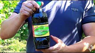 видео Удобрение виноградника